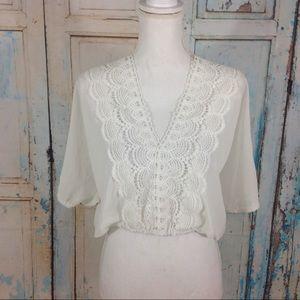 Tops - 1 LEFT Sheer lacy crop top m/l